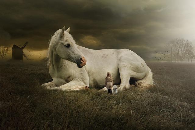 Los caballos son capaces de captar nuestras emociones